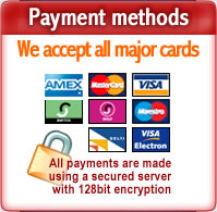 Multiple domain hosting payments - we accept all major credit and debit cards, including Amex, Mastercard, Visa, Visa Electron, Switch, Solo, Discover and Delta.